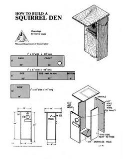 squirrel-den-boxes plans