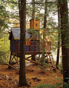 Tree House Plan